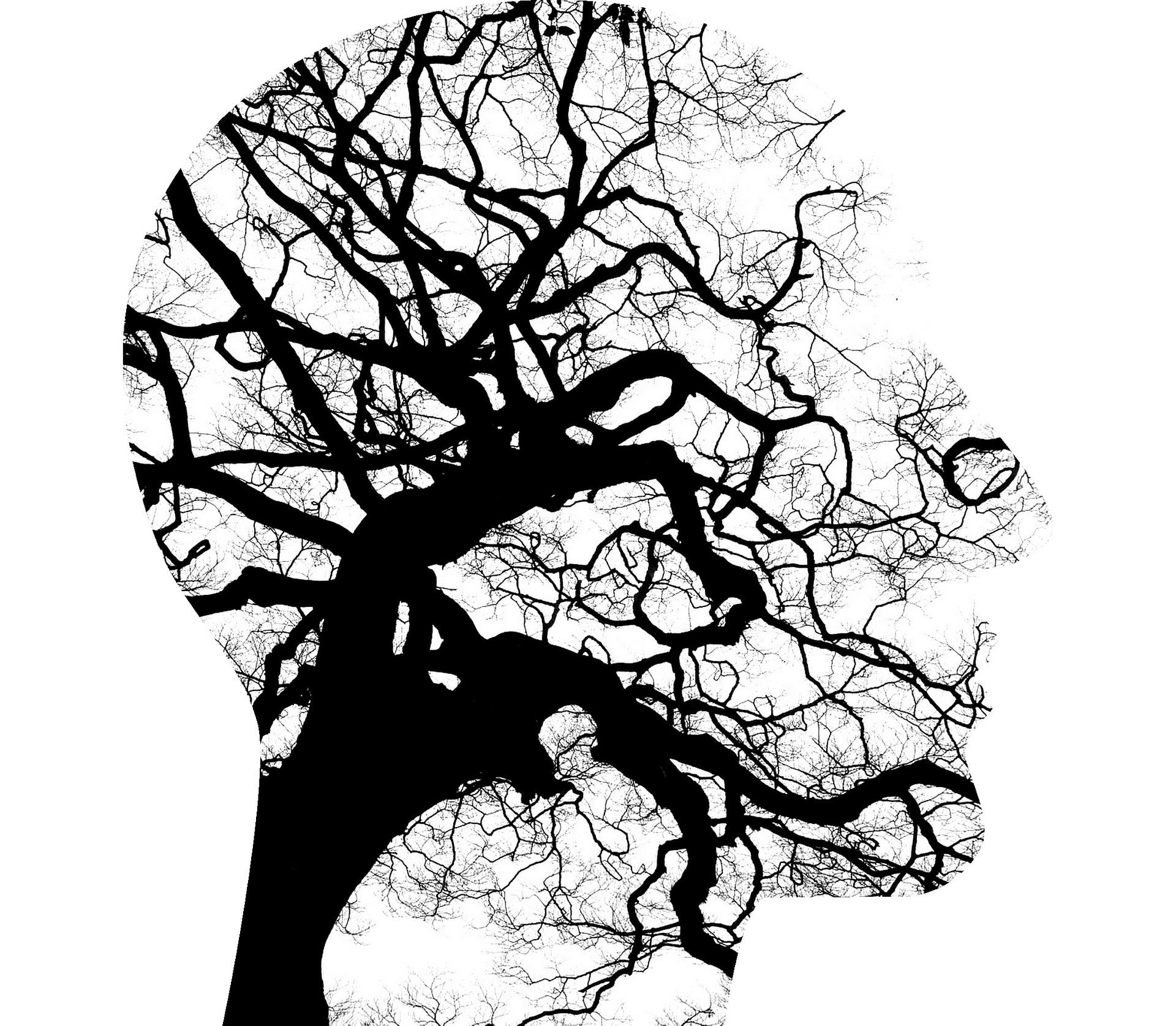 Social stigma harms mental health in autistic population Gair Rhydd