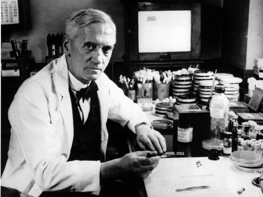 Fleming working in Penicillin antibiotic laboratory