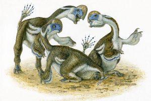 Edinburgh University's New Dinosaur Discovery