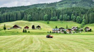 food farming