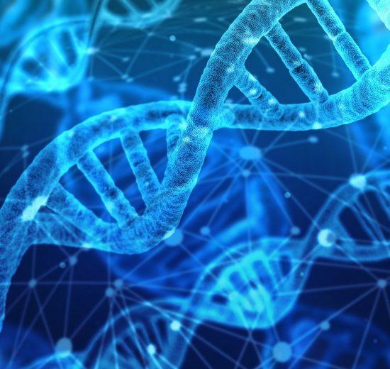 COVID-19 genome