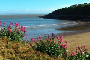"""83 beaches in Wales were awarded the """"excellent"""" rating"""