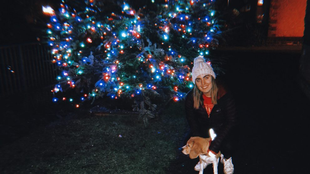Christmas at home with the dog
