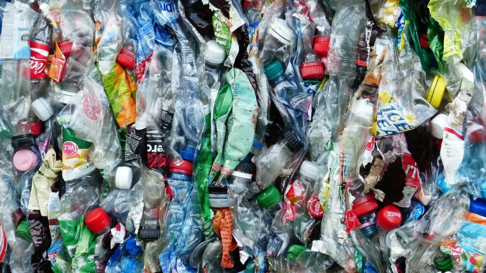 Deposit return scheme will reward consumers who recycle