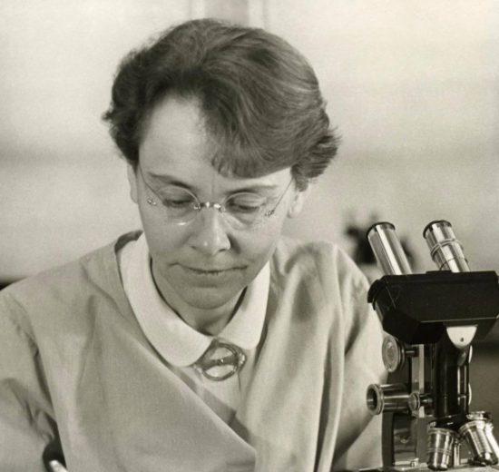 Barbara McClintocks work on jumping genes