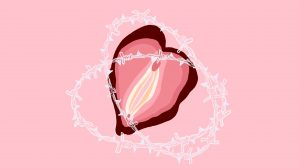 vaginismus vulvodynia pain relationship vulva